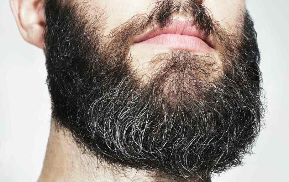 DudeNo1_beard